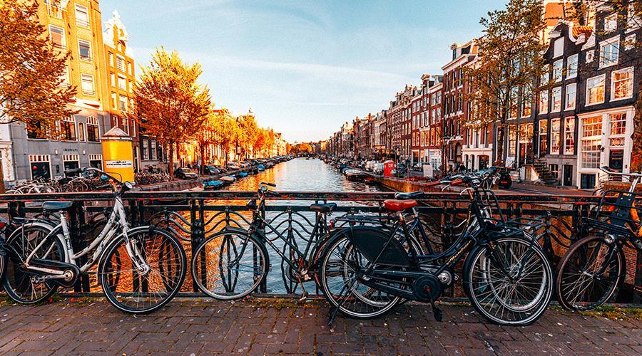 Amsterdam city escape with tour